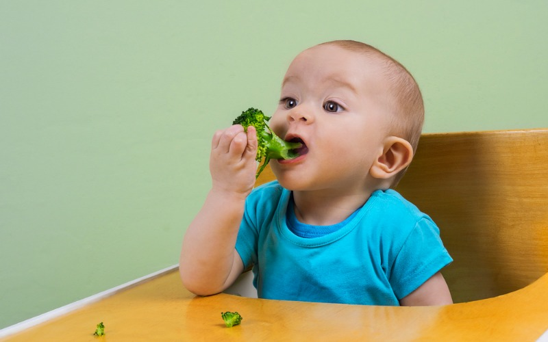 The Benefits of BLW (Baby-Led Weaning)