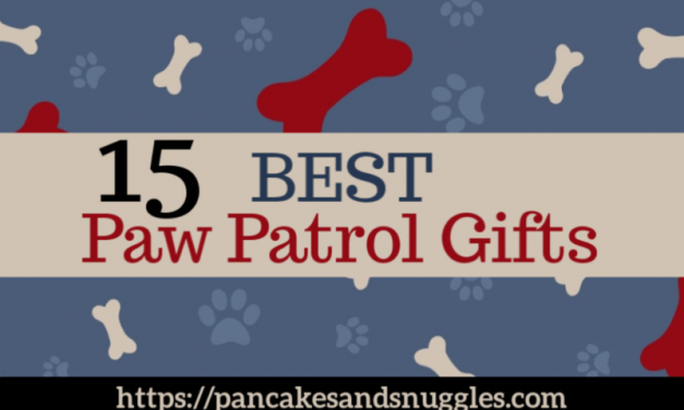 15 Best Paw Patrol Gifts