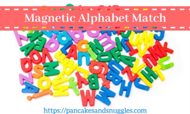 Magnetic Alphabet Match