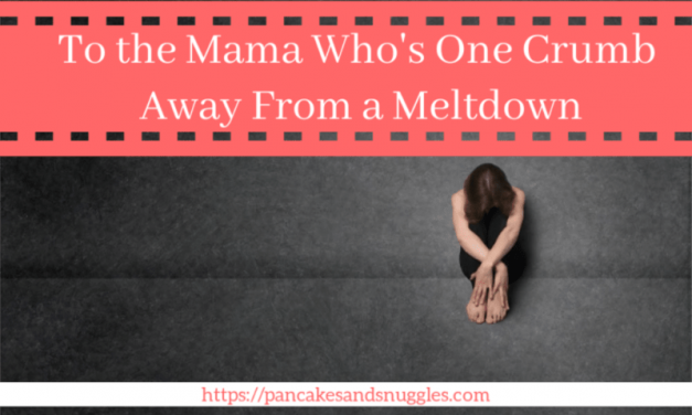 To the Mama Who's One Crumb Away From a Meltdown